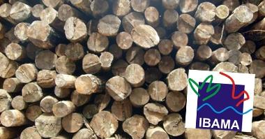 caixa-de-madeira-de-feira-domih-banner1