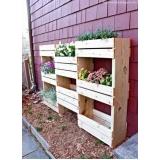 palete para plantas na parede mais barato Cabreúva